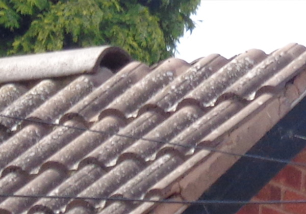 Missing Ridge Capping on Roof