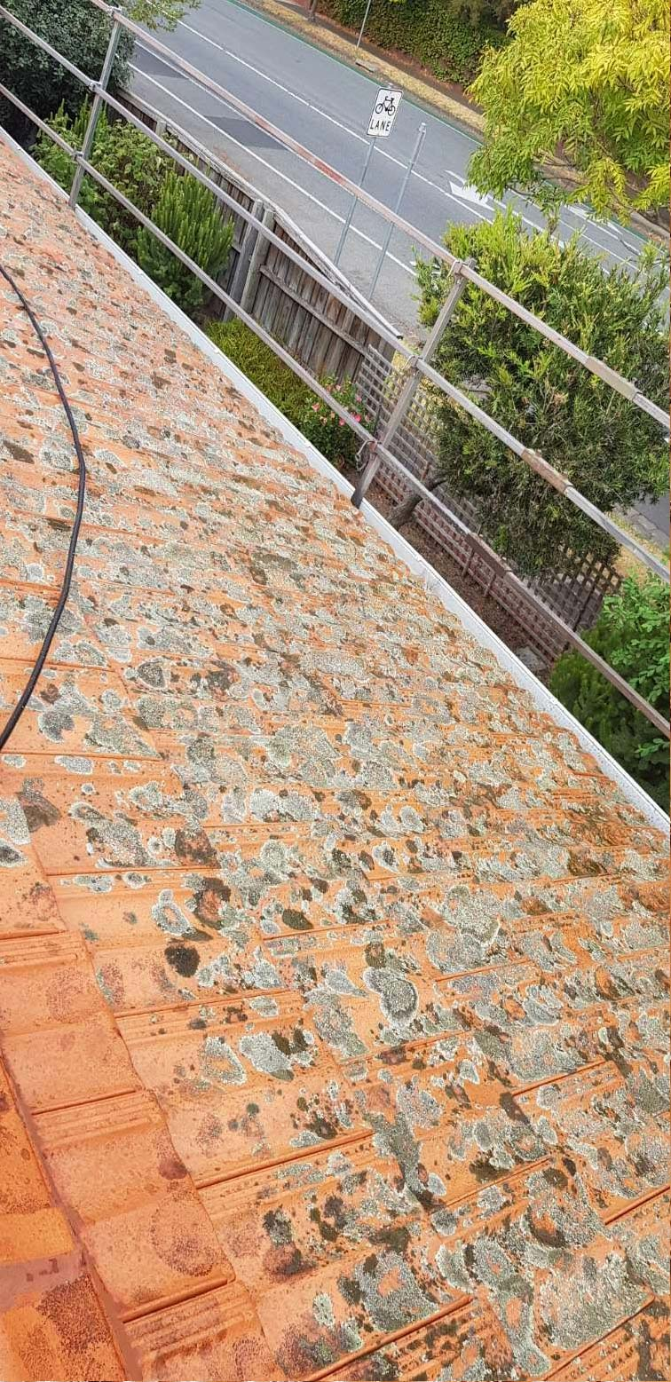 Before Terracotta Roof Restoration