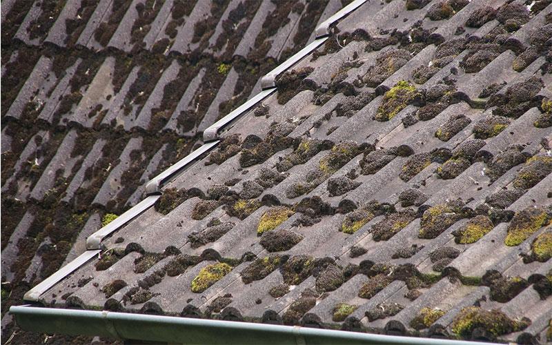 Moulded Roof Restoration