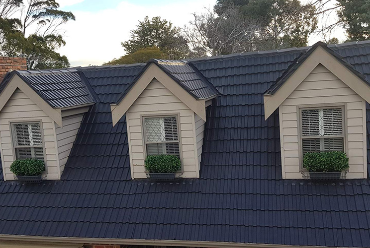 Roof Paint Option