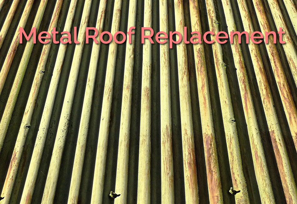 Metal Roof Replacement Featured Image