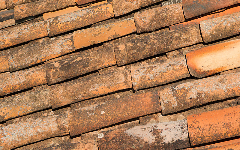 Roof Restoration Cost Terracotta