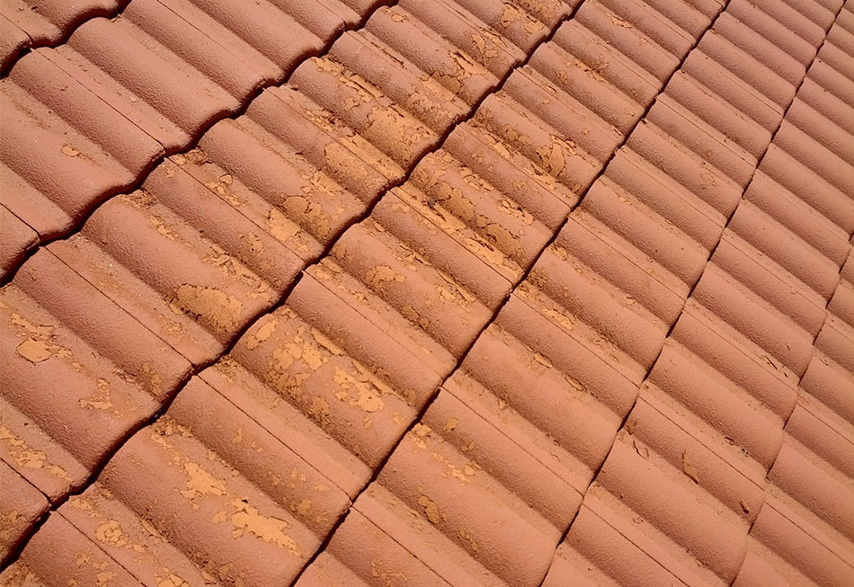 Flaking Roof Paint Vivify Roofing Featured Image